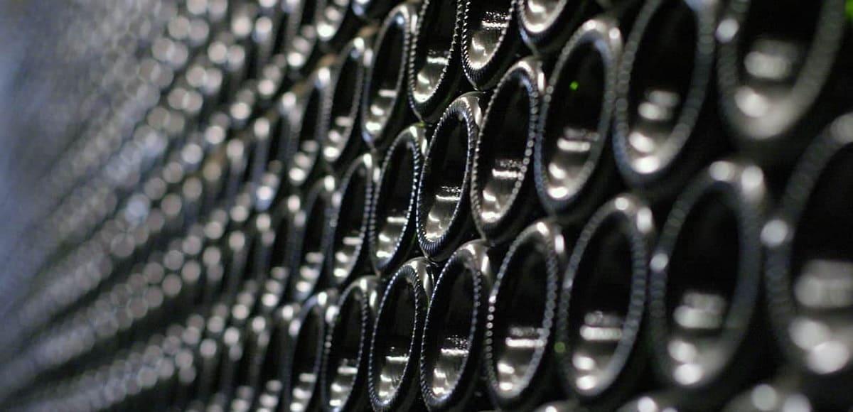 המדריך לאספן היין המתחיל
